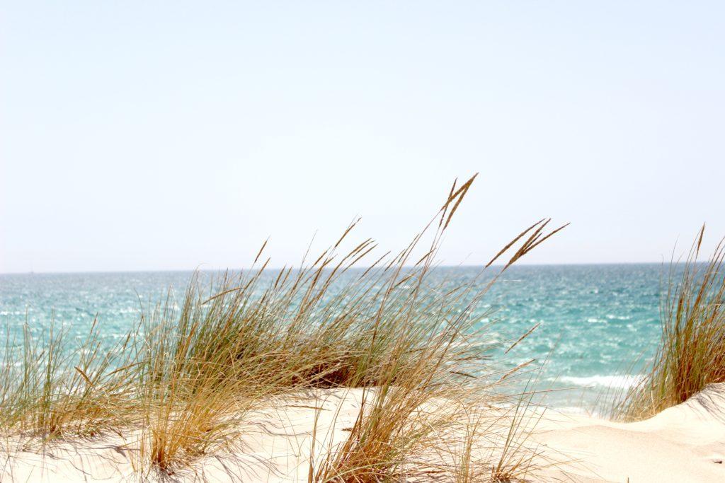 Beneficios de respirar la brisa marina